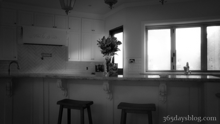 kitchen1 (1 of 1)